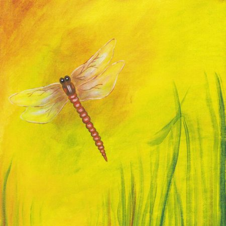 Dragonfly Dreams 16x20