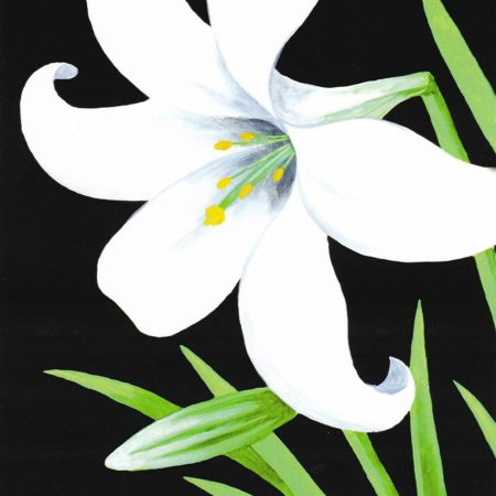 Easter Lily 16x20