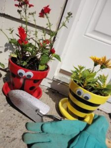 Insect Pots