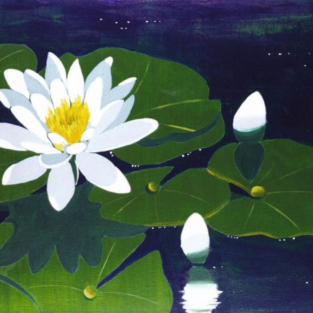 Water Lily 16x20