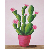 Cactus In Bloom 16x20